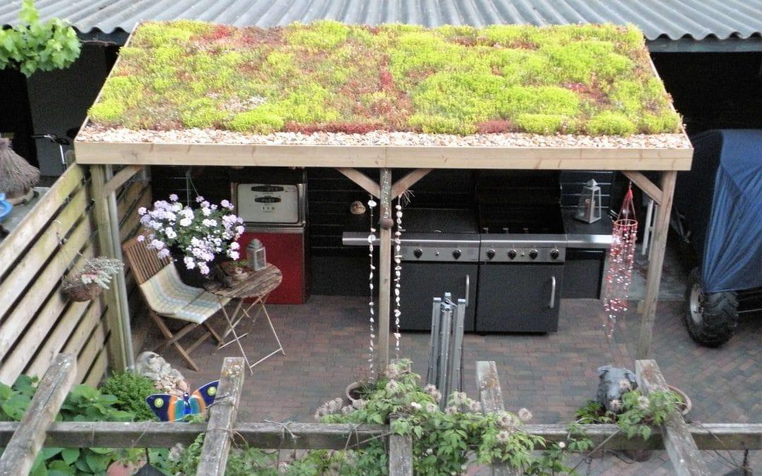 Voordelen van groene daken